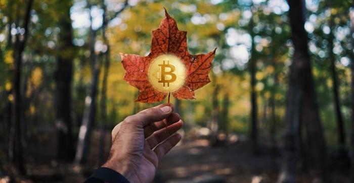 加拿大首個比特幣掛鉤共同基金信託獲批