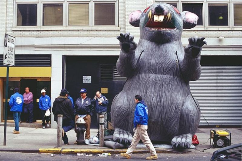 union protesters giant rats的圖片搜尋結果