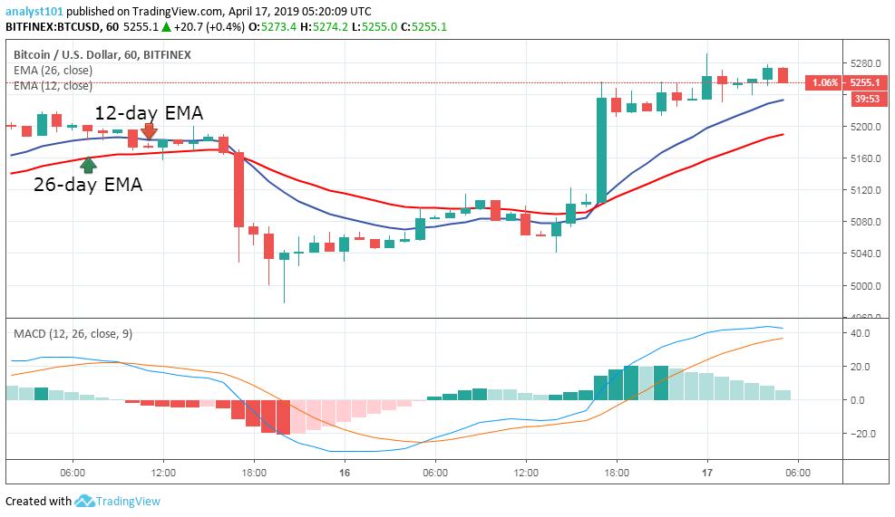 """月17日-比特幣(BTC)每日價格預測"""""""
