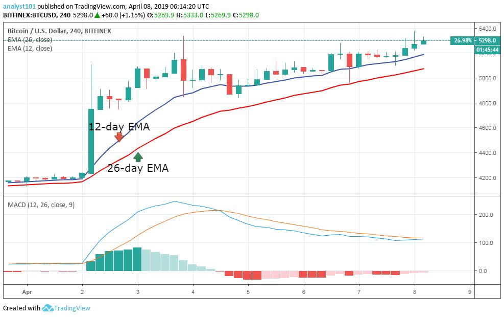 """月8日-比特幣(BTC)每日價格預測"""""""