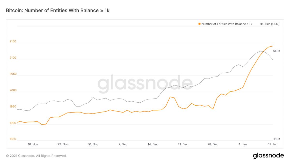 比特幣回檔沒在怕!市場押注 1 月底衝上 5.2 萬美元